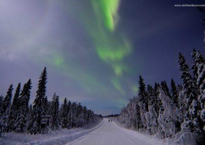 aurora-lapponia-svedese