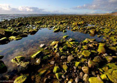 bassa-marea-strandhill