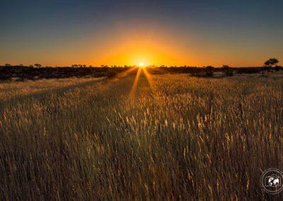 tramonto-sul-kalahari