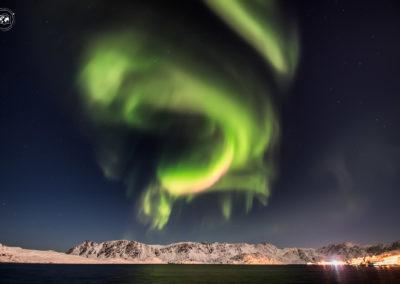 Aurora-gjesvaer-striscia-fucsia